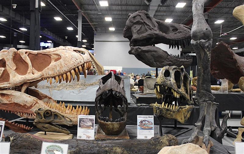 Other dinosaur friends