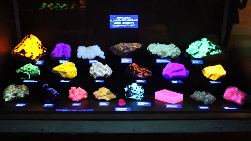 Glowing minerals in ultra-violet light. See these in our dimmed Junior Ballroom.